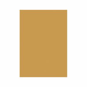 Carton A4 color 160gr/mp auriu Clarina CARTONAU