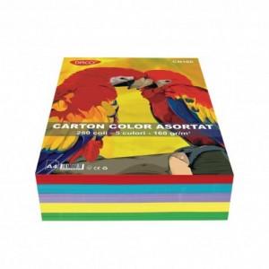 Carton color A4 160gr/mp, 250coli/top 5 culori Daco CN160