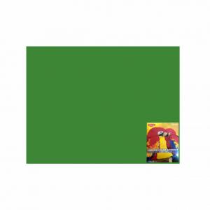 Carton color 50 x 65 240g / mp verde Daco CN240V