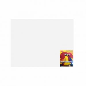 Carton color 50 x 65 240g / mp alb Daco CN240W