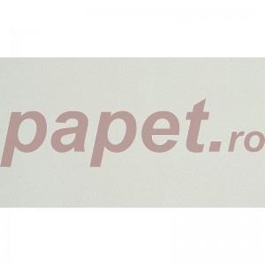 Carton Nettuno Bianco Artico A4 215g/mp 5054
