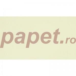 Carton Splendorgel Avorio A4 170g/mp CSA170