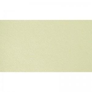 Carton A4 220g/mp Sirio Pearl Merida Cream 822002102