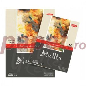 Bloc desen A4 pentru lucrul in ulei Daco BD425