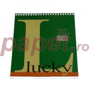Bloc notes spira dubla A5 100 file E10097