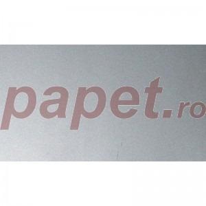 Carton Splendorlux Metal Argento A4 250g/mp 725002169