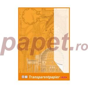 Calc A3 Herlitz 25file 65g/mp 0696302