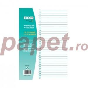 Index plastic Exxo 1-31 gri 186166027