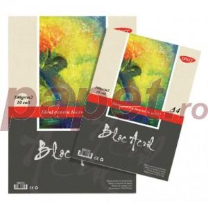 Bloc desen acril A4 300 g/mp Daco BD431