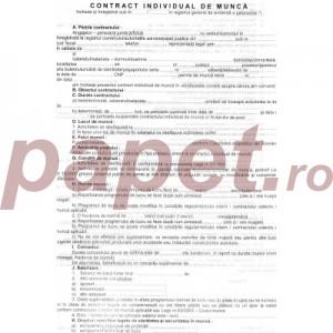 Contract Individual De Munca A4 564