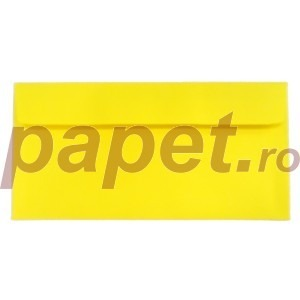 Plic Daco DL gumat color galben PC12G