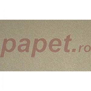 Carton Merida Kraft A4 220g/mp 822002100