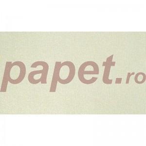 Carton Dali Dore Candido A4 205g/mp DDCA205