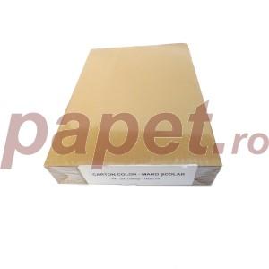 Carton A4 color 160G/MP maro hazelnut 5419