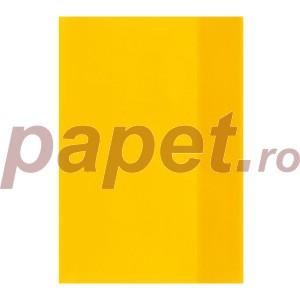 Coperta caiet Herlitz A5 translucid diverse culori 5215041-1