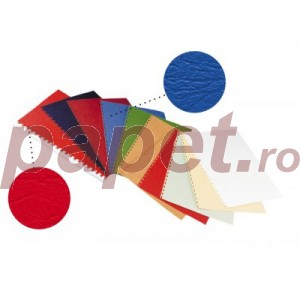 Coperti imitatie piele A4,250g/mp 6582
