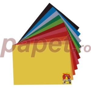 Carton color 50x65 240G/MP 10coli/top Daco diverse culori 5925