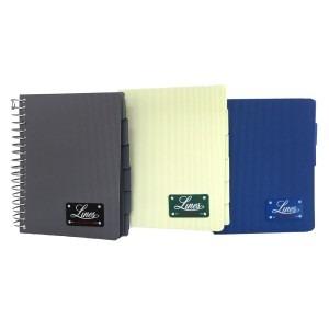 Agenda Argo lines A6 150 file diverse culori 98234
