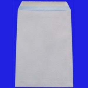Plic C4 80g alb gumat E551