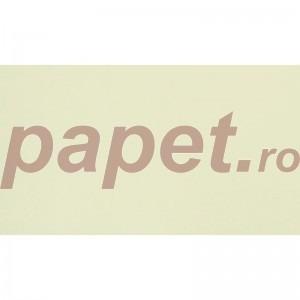 Carton Symbol Ivory Satin A4 170g/mp SIS170