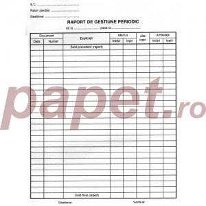 Raport gestiune periodic 2702